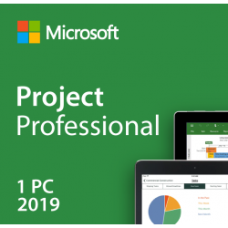Project 2019 Professional -...